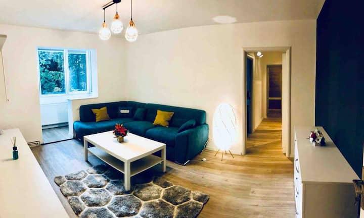 Liviu's Apartment