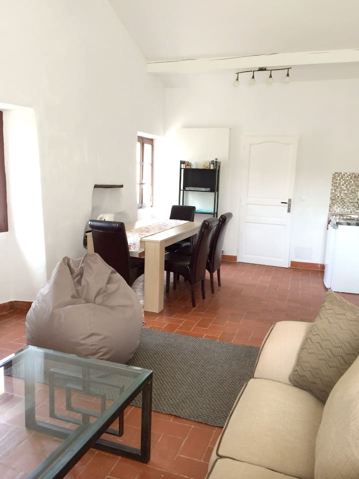 Apartment with 2 bedrooms in Montauriol, with shared pool, furnished garden and WiFi - 34 km from the beach