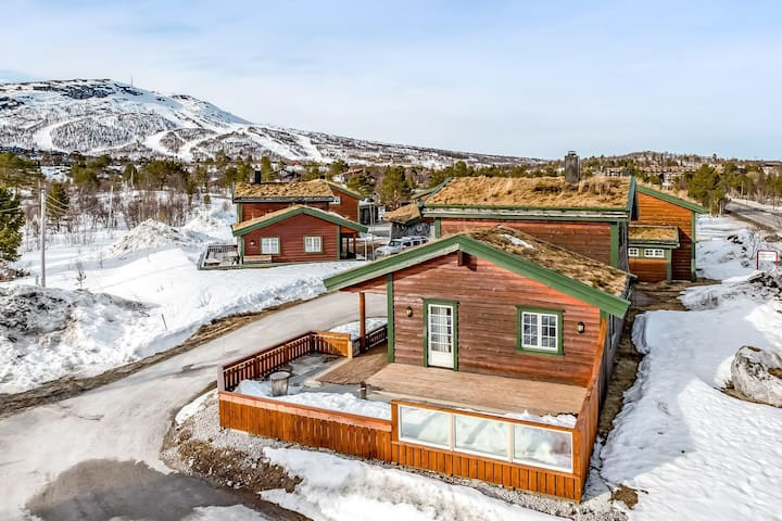 Luxus hut, Hovden i Setesdalen, Norway - Hovden - Chalet