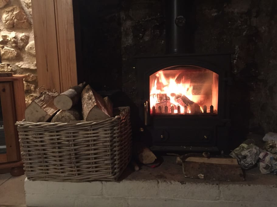 Fire stove with start pack logs in winter