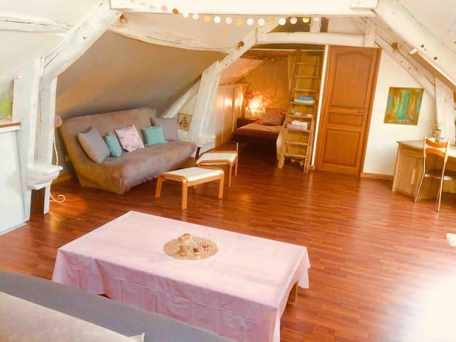 Grand Duplex cosy au calme SUD77 / Fontainebleau