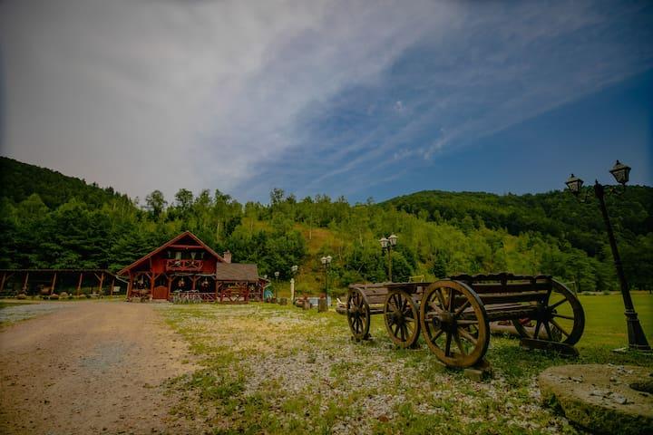 HANUL MORII: Nature, Camping, Sauna, Jacuzzi, Pool
