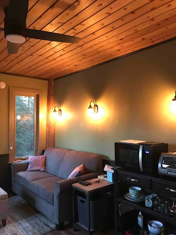 Living Room With Full Size Pull Out Sofa Bed