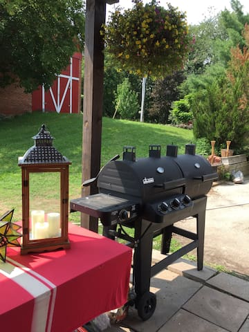 Charcoal and propane BBQ