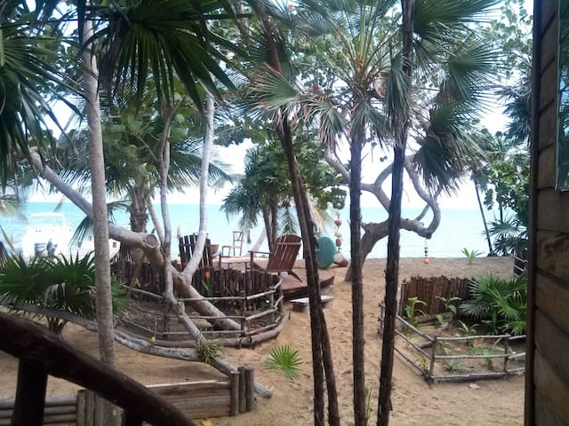 Driftwood Bungalow on the Beach in Belize - Belize City - (ukendt)