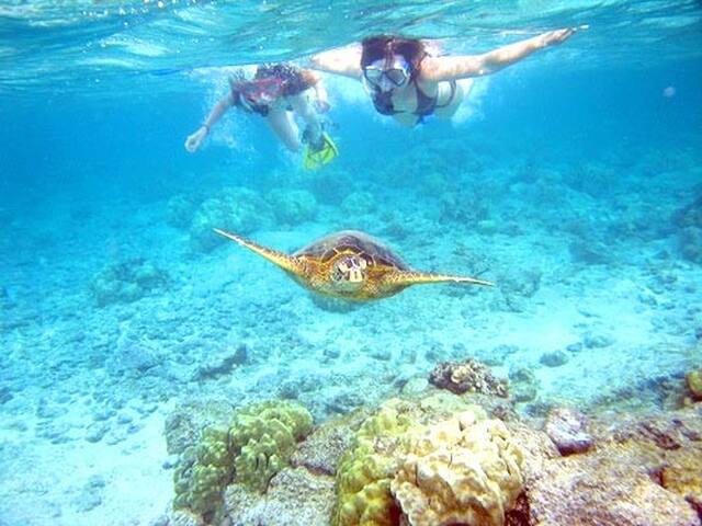 ALL INCLUSIVE  Private Bahamian Island Resort!!
