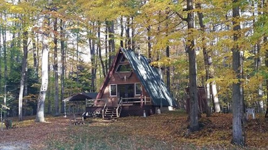 Outdoorsy AFrame Set Back On Acreage - Hamlin Lake - Ludington - House