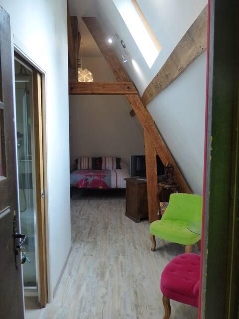 Chambre spacieuse et indépend dans cadre verdoyant