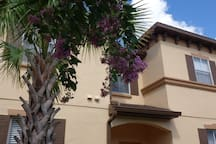 Wonderful House Close to Disney! 4bed3b SuperHost