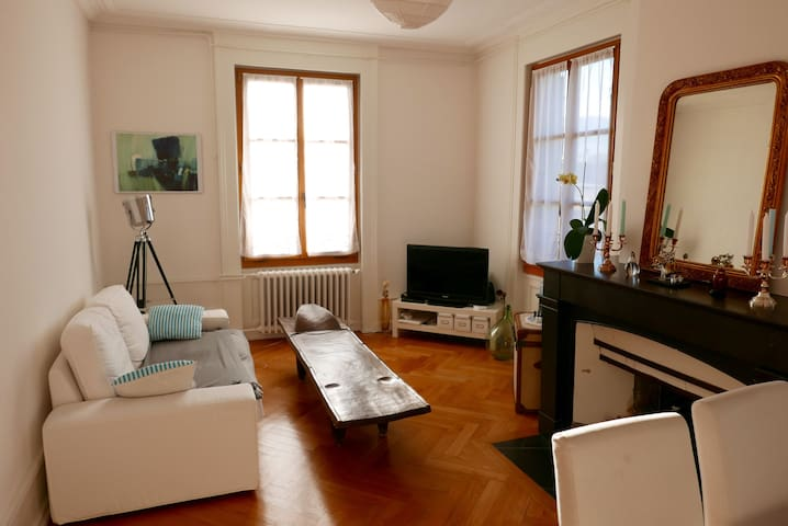 Cosy room in a charming flat - Genf - Wohnung