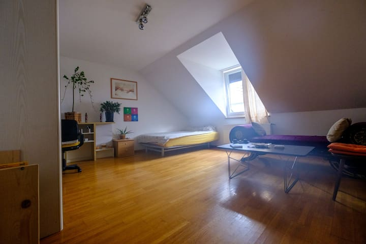 Warm spacious room in a cosy appartment - Basel - Leilighet