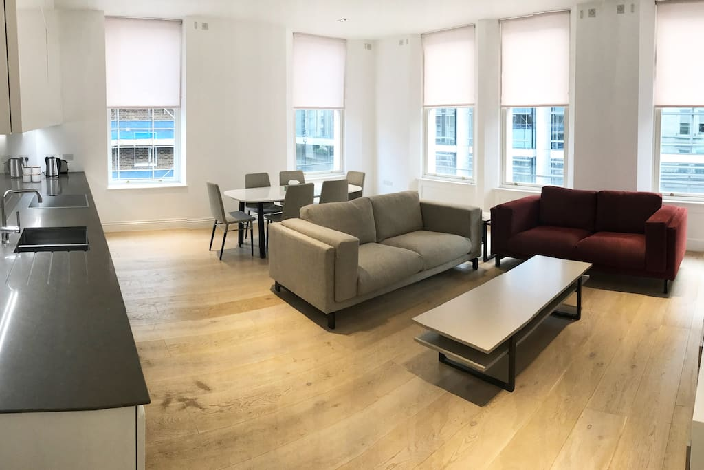 Open Plan Living Room/Kitchen - Very light and spacious space with 5 windows overlooking Seymour Street and Place