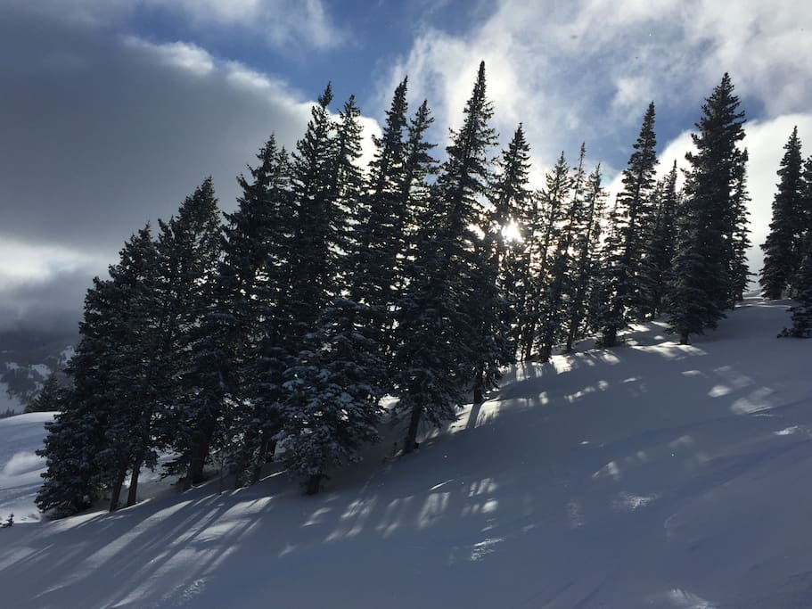 January powder day at Solitude Mountain Resort