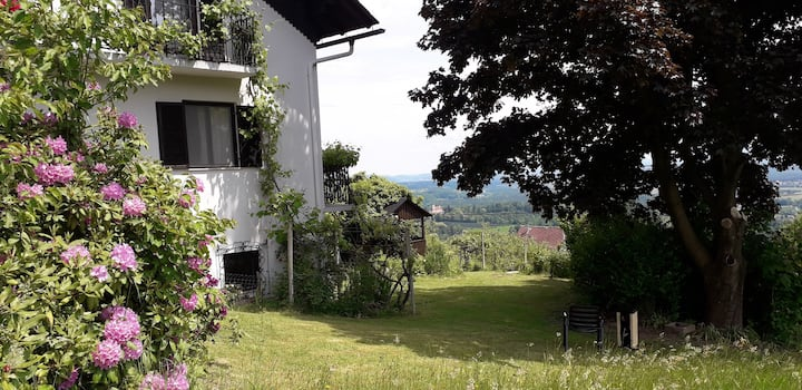 Great apartment in a quiet village in styria
