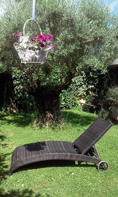 Garden relax