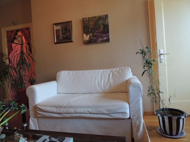 Great 1 bedroom near center and green areas. - Cenevre - Daire