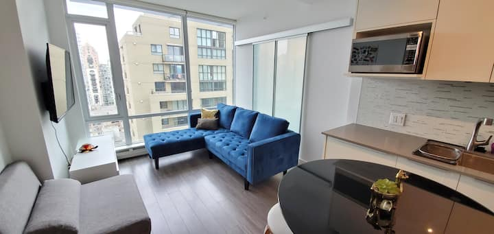 Fully Furnished 1 Bdrm Downtown Condo