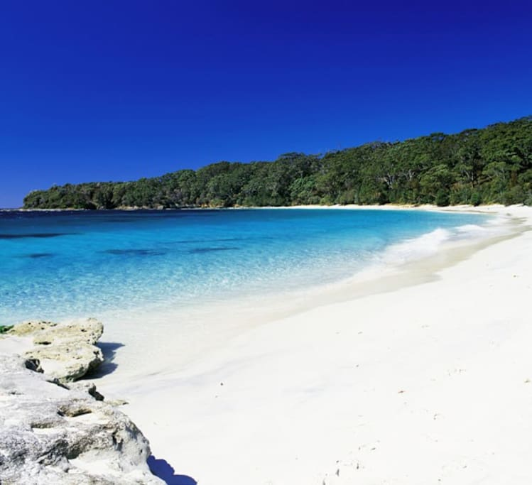 Jervis Bay - Whitest sand in the World!