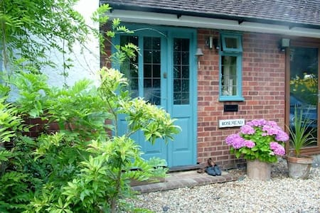Friendly artist's house, with modern art to buy - East Sussex - Hus