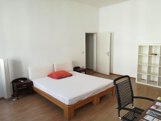 Spacious sunny room in city center (U2 in 1min)