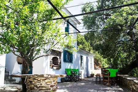 """Pirgari"" _ Traditional stone house in Arethousa"