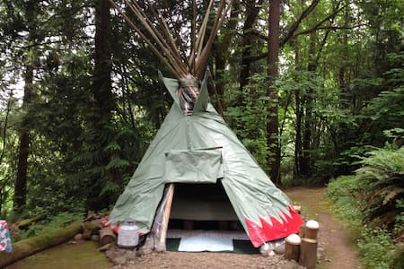Awesome Tipi