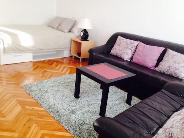 New Belgrade Studio