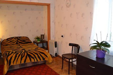 The cozy flat in central area of Saint-Petersburg - Sankt-Peterburg