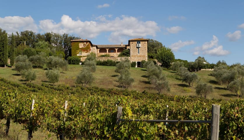 5 bd, views, lawns, vineyards - mont - Villa