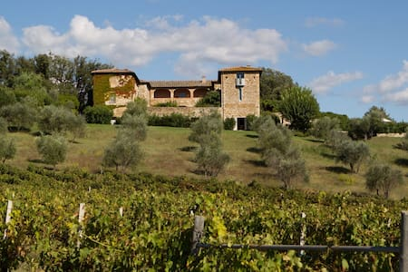 5 bd, views, lawns, vineyards - mont - Вилла