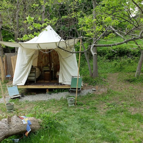 Canvas Tent at World's End - Cold Spring - Barraca