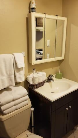 Bathroom sink and vanity mirror.