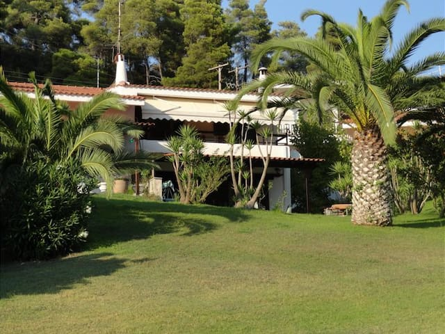 Beachfront Villa at Elani Halkidiki 100m from sea - Elani - House