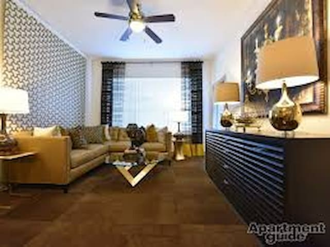 PERFECT Location 1 BDR apartment for Superbowl