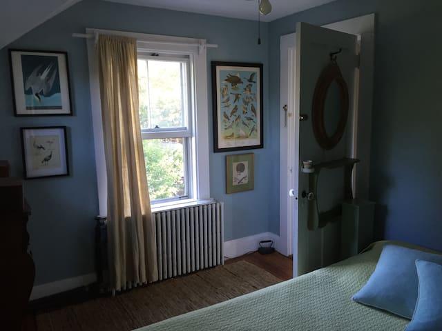 The Look Inn/ Blue Room