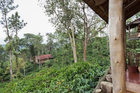Tree house model cottages in a coffee plantation - Thinapuram