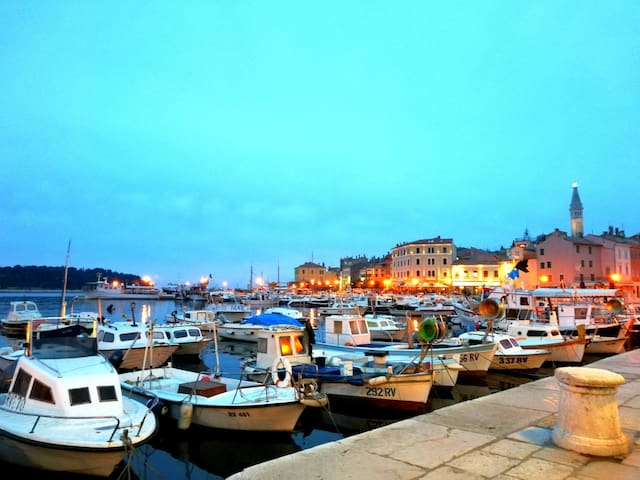 Guidebook for Rovinj