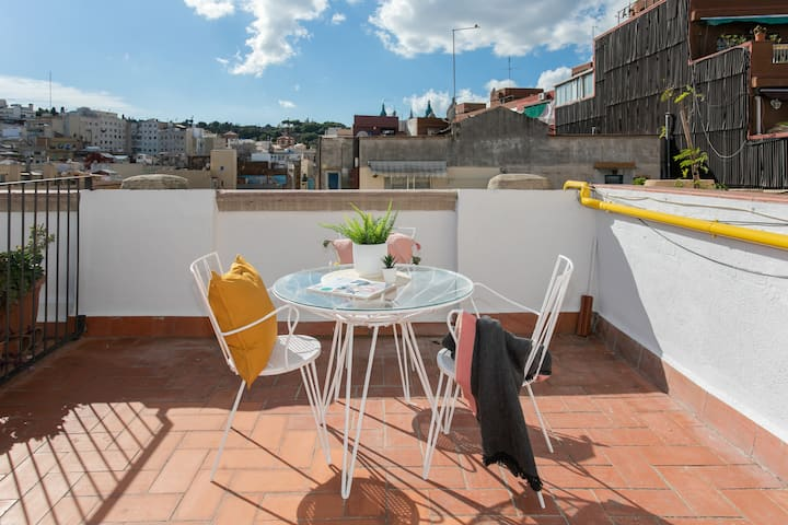 Penthouse apartment with 2 br and terrace
