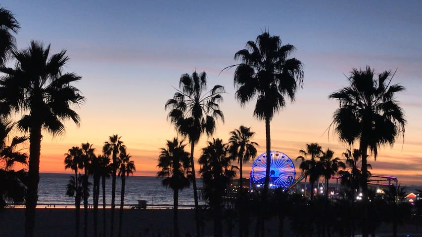 Santa Monica palm trees, pier and one of our glorious sunsets!  Take from down at the beach.