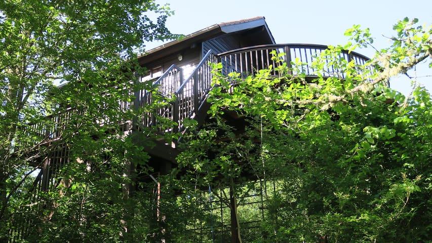 Cabane du Rouge-Gorge - Auriac-du-Périgord - Cabin