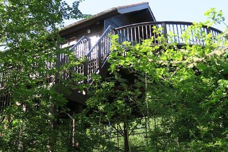 Cabane du Rouge-Gorge - Auriac-du-Périgord