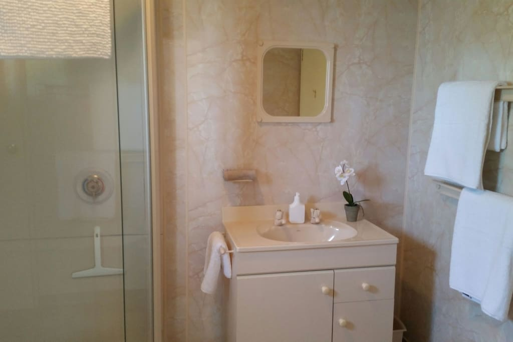 Retro Ensuite. Clean and functional