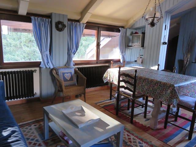 Una deliziosa mansarda di montagna - Pinzolo - Lejlighed