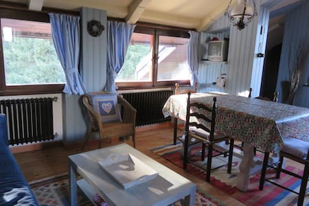 Una deliziosa mansarda di montagna - Pinzolo - Квартира