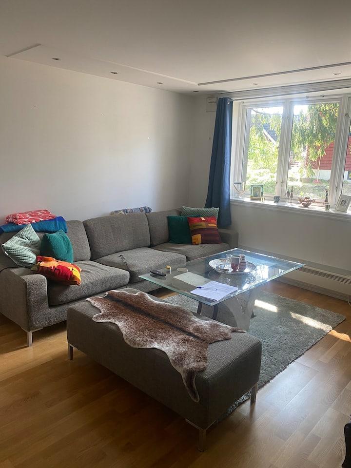 Entire flat in Oslo (cozy)