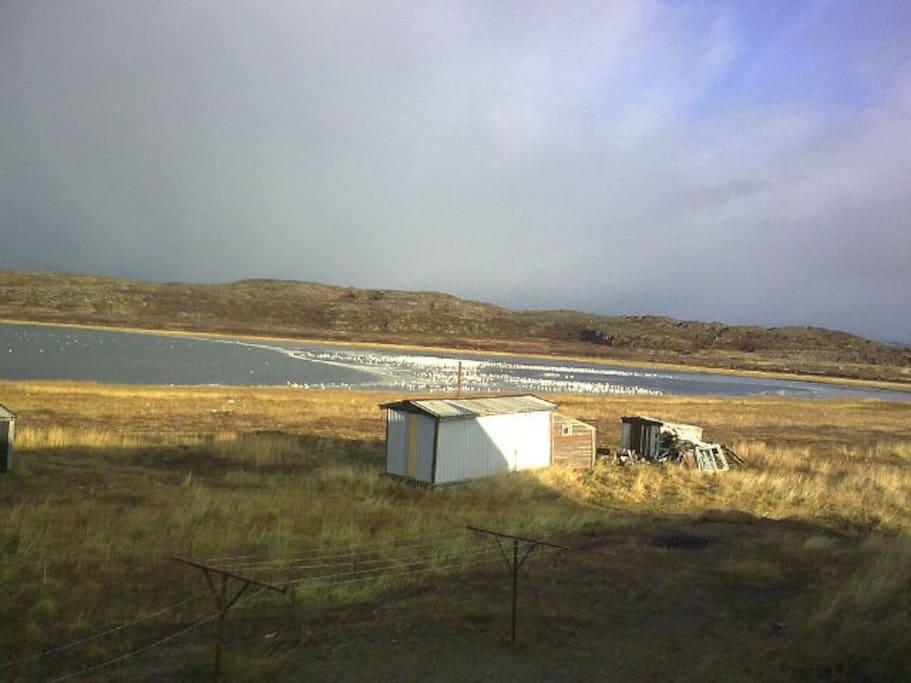 Озеро рядом с домом