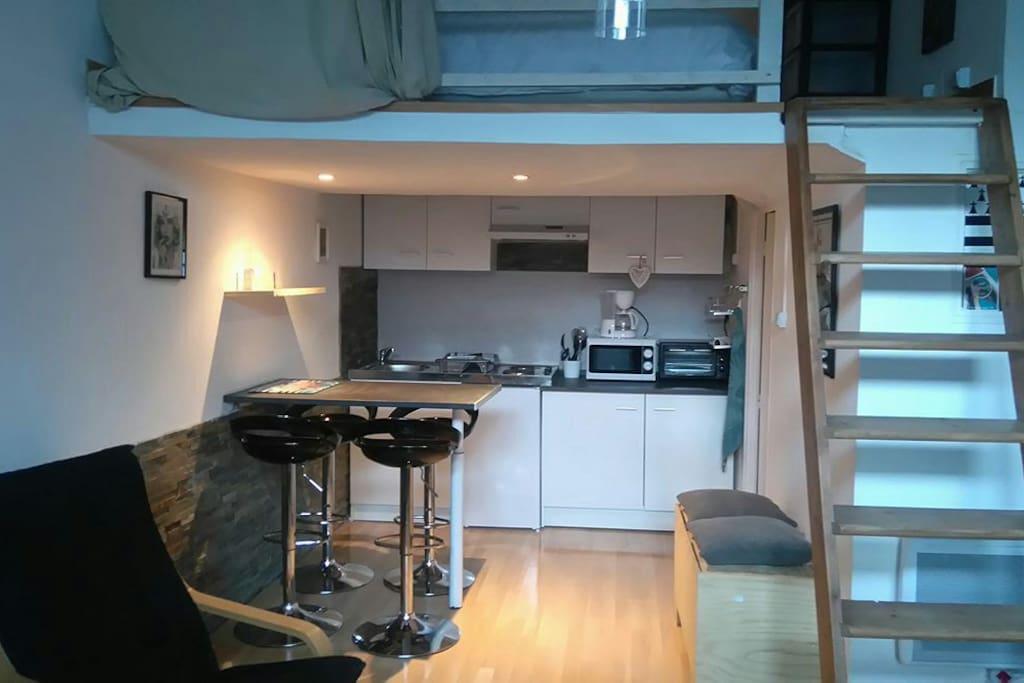 vue de l'ensemble de l'appartement spacieux et agréable .