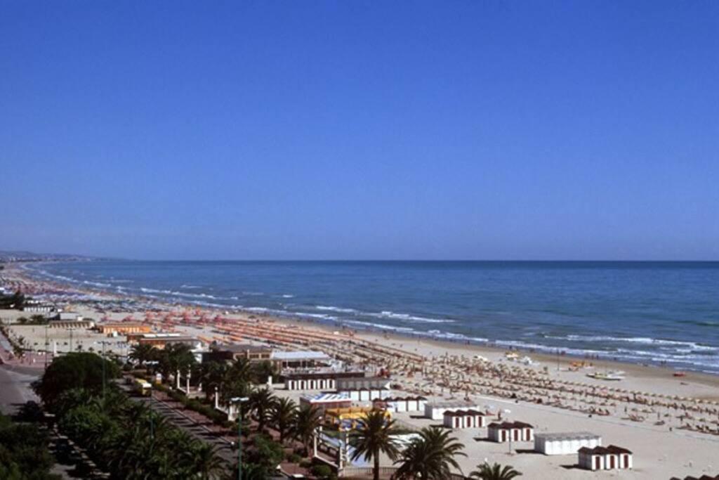 La Costa adriatica a 10 minuti da casa .