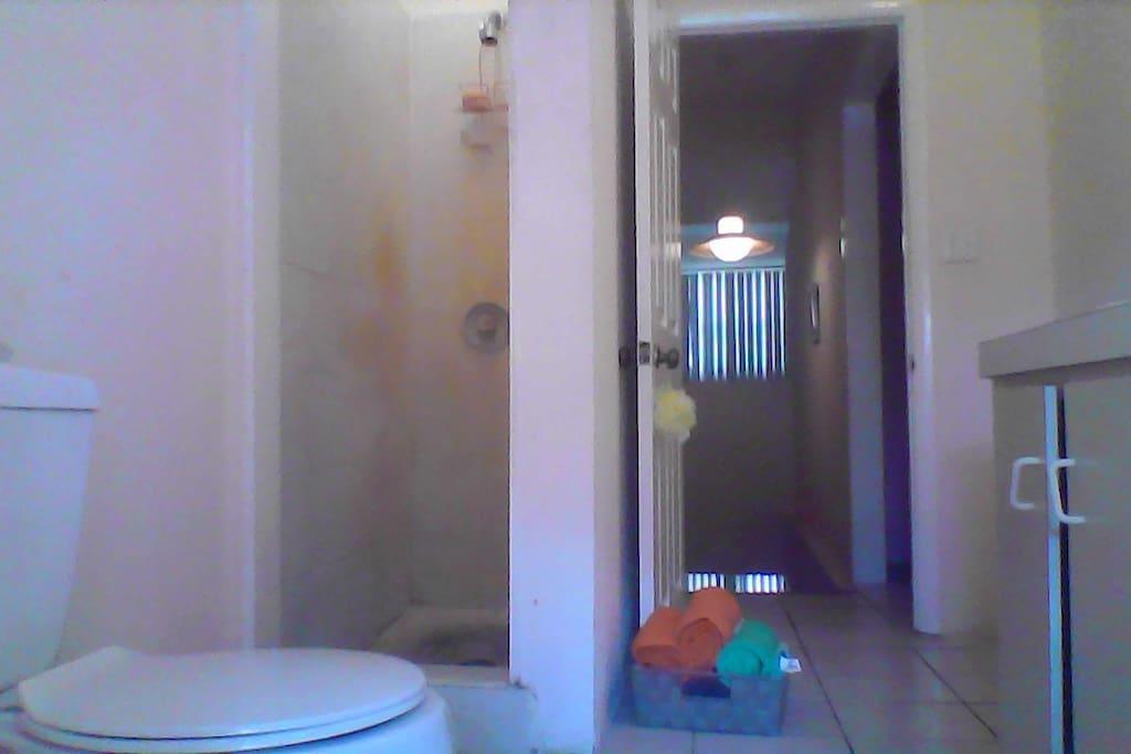 Standing shower/ toilette