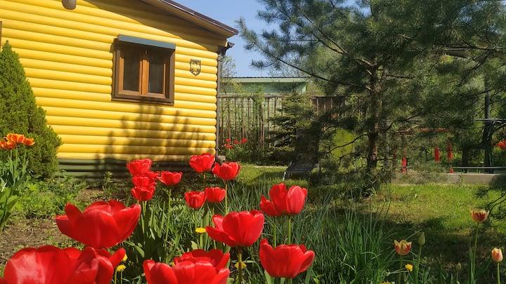 Дом для отдыха в Переделкино